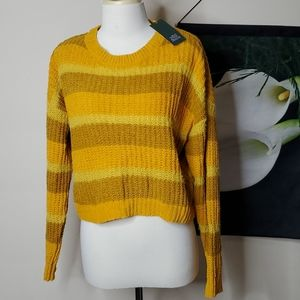 NWT Wild Fable Striped Crop Sweater